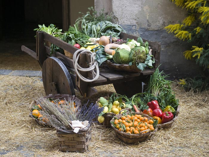 Medieval England Food Recipes
