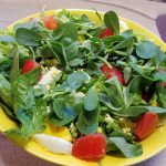 Purslane salad with egg, tomato and mozarella
